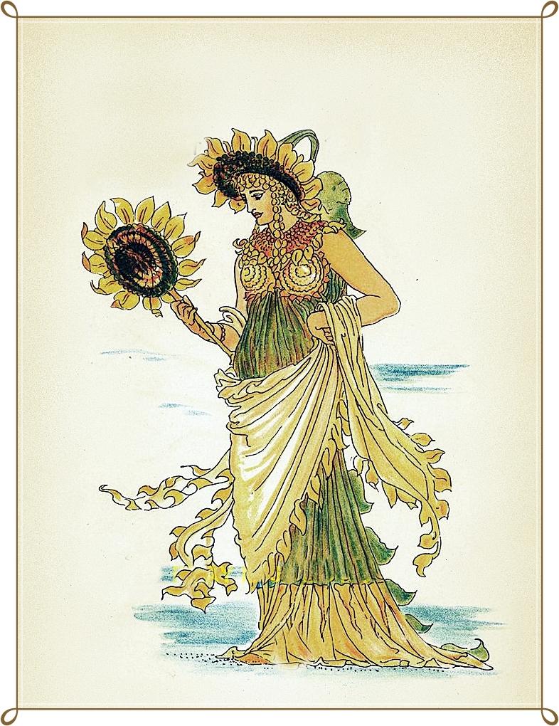 povestea legenda florii soarelui