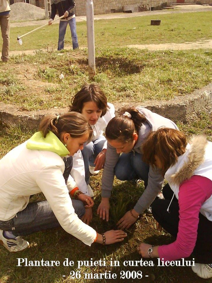 plantare de puieti in curtea liceului cobalcescu moinesti 26 martie 2008 2